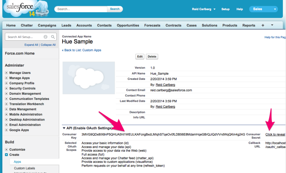 Connected_App__Hue_Sample___salesforce_com_-_Developer_Edition-2